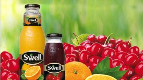 Создание интернет-баннеров для соков «Swell»
